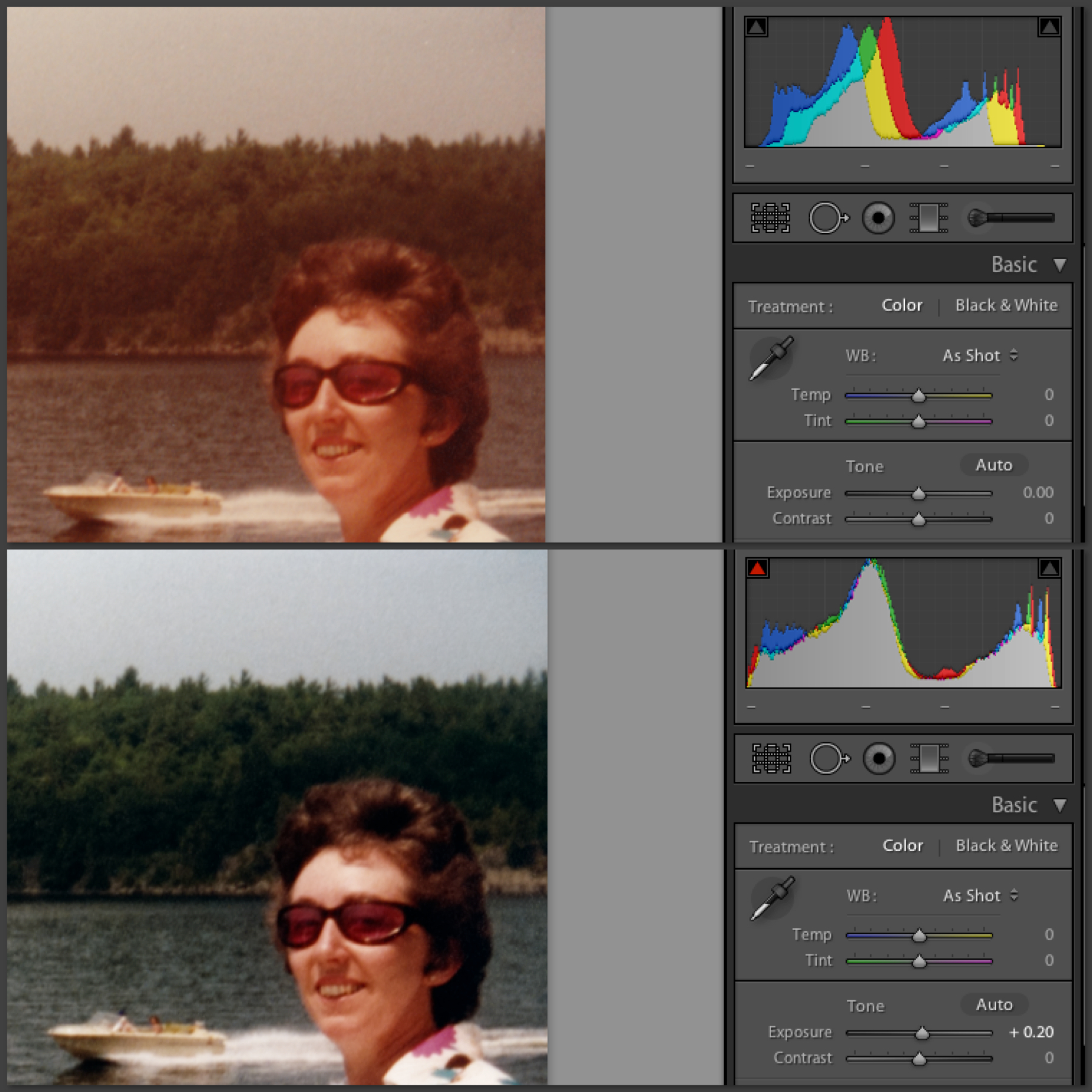How to fix color cast in photoshop elements - Histogram Levels Demo